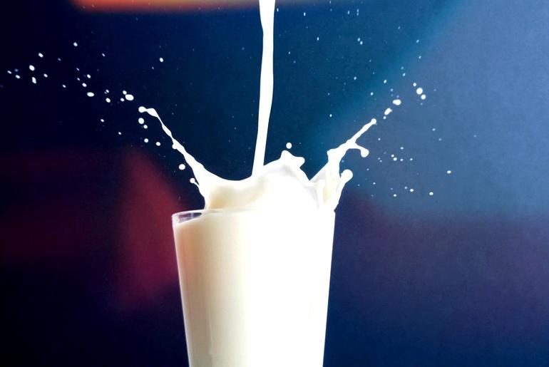 Resultado de imagem para leite