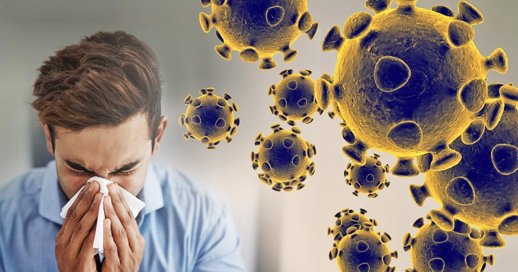 Resultado de imagem para corona virus nordeste